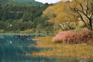 Paisagem Natural/Uma ponte prá lagoa