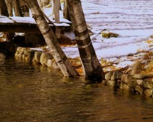 Paisagem Natural/Outono com neve.