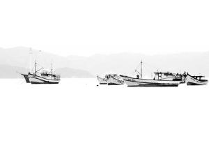 Abstrato/Barco fantasma