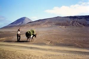 Gentes e Locais/Encontros no deserto/ Slid digitalizado