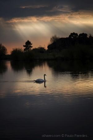 /Nightfall at the lake...