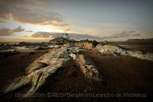 Gentes e Locais/Landscape