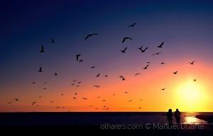 """Gentes e Locais/' Just a Sunset """""""