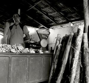 /A venda de bananas e palmitos