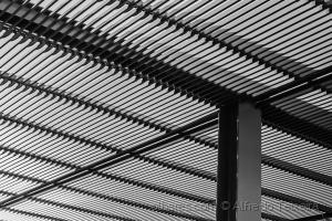 Abstrato/Linhas paralelas...