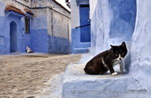 Gentes e Locais/Old Town