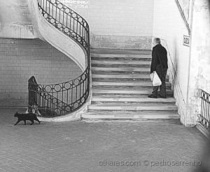 Gentes e Locais/CatBolhao