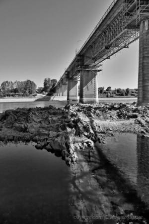 Paisagem Natural/Debaixo da Ponte
