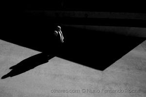 /Entre a sombra e a luz