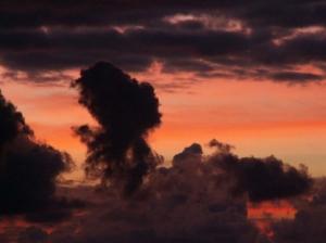Paisagem Natural/Nuvem ao Amanhecer Madeira