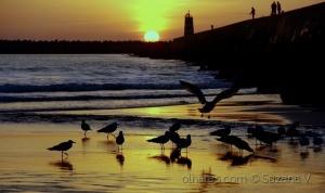 Outros/Close to the sun