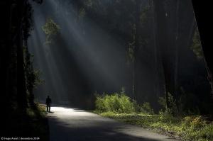 /Ray of light