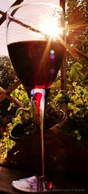/Um brinde ao dia do vinho!