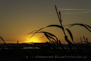 Outros/Just a Sunset