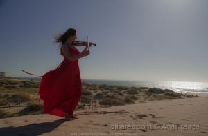 /O violino que transporta mistério e paixão
