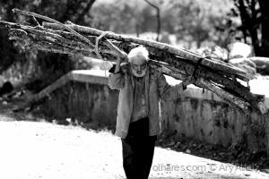 Gentes e Locais/Andante: sobrevivente.