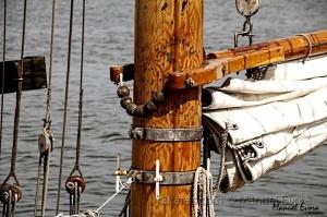 /O mastro, a verga e a vela