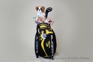 Retratos/Golfe baby