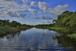Paisagem Natural/Entardecer no Igarapé, Rio Negro, Amazônia, Brasil