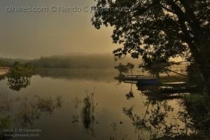 Paisagem Natural/Amanhecer nas margens do Rio Negro, Amazônia, Bras