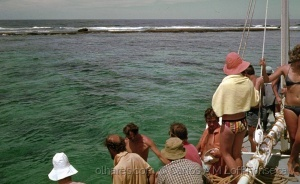 Paisagem Natural/Diver Paradise