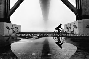 /The fog