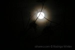 Outros/Nova Lua Cheia