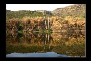Paisagem Natural/::Rio Sabor::