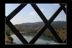 Paisagem Natural/Por entre a ponte