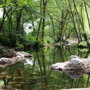 Paisagem Natural/Natureza