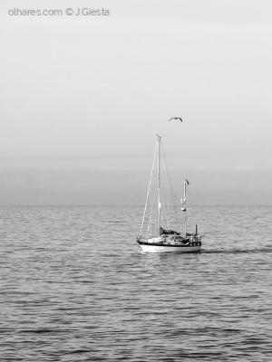 /O barco ...
