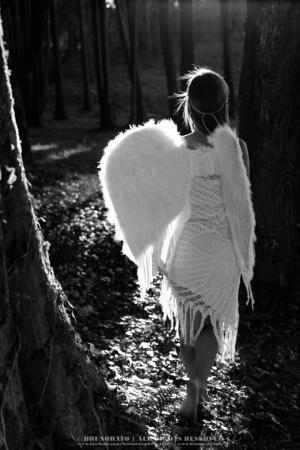 Retratos/Fallen angel