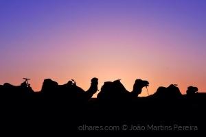 Gentes e Locais/Madrugada no deserto