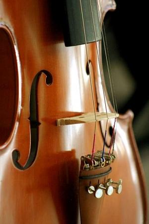 Outros/corpito de violino
