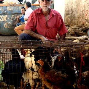 Gentes e Locais/O vendedor de galinhas
