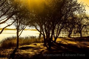 Abstrato/O milagre da Luz