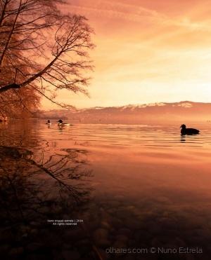 Paisagem Natural/na lago gelado