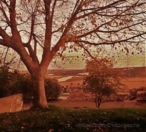 /Marcas de Outono....