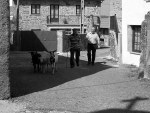Gentes e Locais/o passeio do Ti Zé