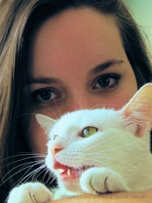 Retratos/Belas gatas