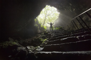Paisagem Natural/The Exit