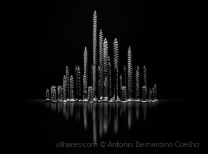Abstrato/The city (remastered)