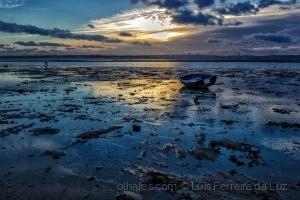 Outros/A sustentável beleza do estuário