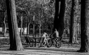 Gentes e Locais/Curiosidade Humana, (Ler)