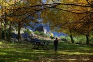 Paisagem Natural/E Ainda o Outono...