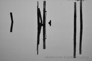 Abstrato/Reflexo