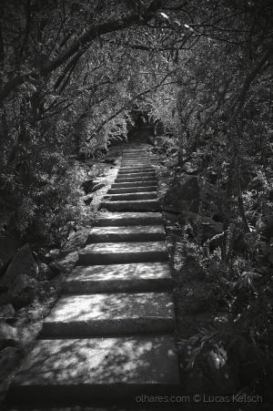 Paisagem Natural/Escadaria