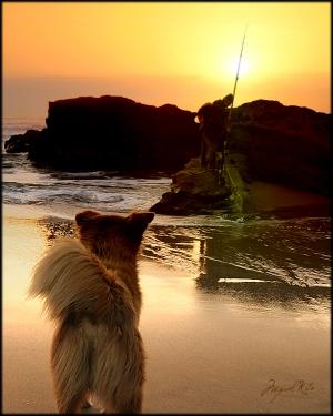 Gentes e Locais/O cão e o pescador
