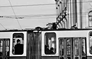 Gentes e Locais/Viajante
