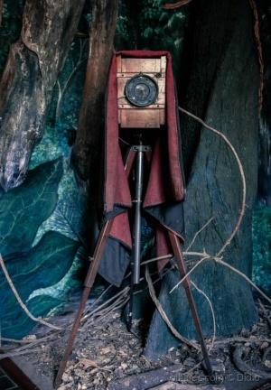 /Fotografar é ... (descrição)